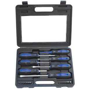 21 SCREWDRIVER AND BITS SET